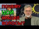 Виктор Цой и его ориентация Ответ Артемия Троицкого на вопросы зрителей АРУ ТВ