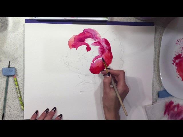 Watercolor painting tutorial flowers Peony | Step by Step Tutorial