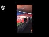 Hooligans Fight _ Austria Wien vs Rapid Wien 07.08.2016
