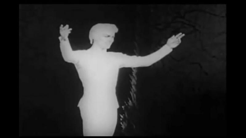 Rudolph Nureyev - Prince's Variation Bluebird Solo and PDD [Sleeping Beauty 1961]