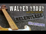 Walter Trout &amp the radicals Relentless The Concert (2003)