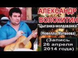 Александр Волокитин - ЦЫГАНКА-МОЛДАВАНКА (Н.Матвеева) (Запись 26.04.2014)