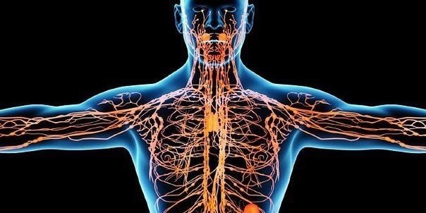 аденома и простатит связаны