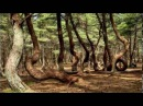О геопатогенных зонах - Ченнелинг Крайон