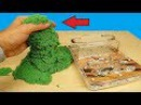 Реакция муравьев на кинетический песок! Почему они это сделали Муха из Китая! alex boyko