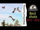 Охота на уток и гусей Лучшие выстрелы 2015 2016