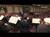 Vienna Philharmonic New Years Concert 2010 - Part 2