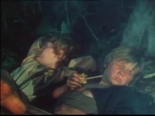 Приключения Тома Сойера - фильм (серия 2)