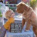 3-летний усыновленный мальчик и пёс из приюта – лучшие друзья.
