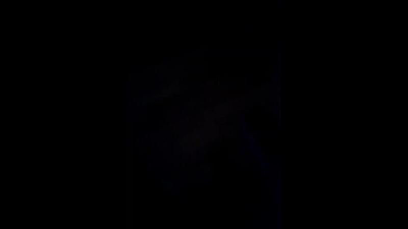 Эльза Холод - Live