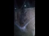 ночной хулиган