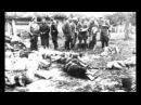 Польский ответ на Волынскую резню mikle1
