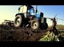 Сорнякам БОЙ! Предпосевная культивация на ЮМЗ и МТЗ! СельхозТехника ТВ