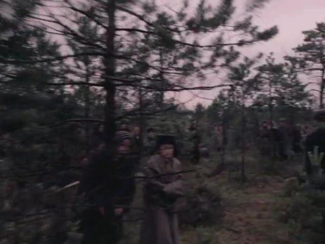 Come and see(1985) Steadicam shots/Иди и смотри(1985) кадры, снятые стедикамом