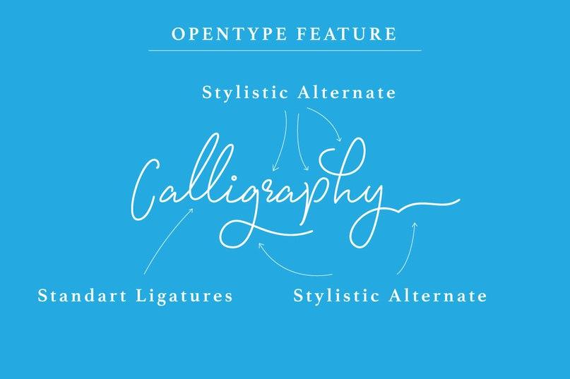 Download Signatura Monoline font (typeface)