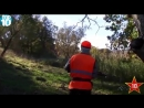 Chasse Sanglier,Top 10 Shoots hunting,Battue Sanglier.mp4