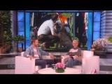 Ryan Gosling Remembers His Beloved Dog George RUS SUB