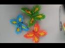 3d origami butterfly- Xếp Bướm origami 3d - poppy9011