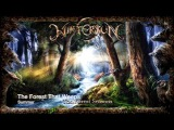 WINTERSUN - THE FOREST SEASONS FINAL VIDEO - EVERY MUSIC SAMPLE