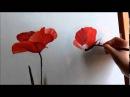 DeArt Papaveri - poppies paintings