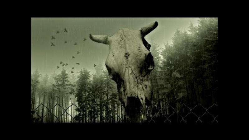 CYDIA - Imitation Of Life (Имитация Жизни) [Official Video]