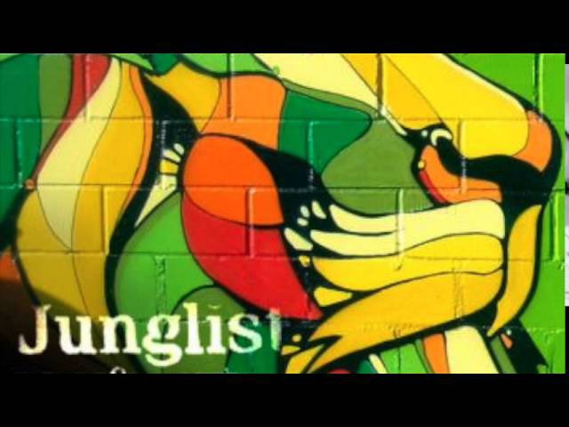Babylon Ragga Jungle Mix