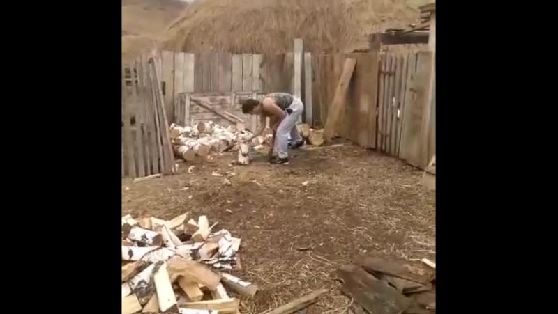Ямиль Баймурзин ауылда утын яра😀