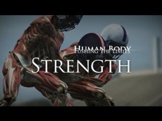 Тело человека. грани возможного - сила мышц (human body. pushing the limits. discovery 2008)