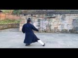 Wu Dang Tai Yi Wu Xing Quan