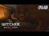 The Witcher 3: Wild Hunt - 145 серия [Кровавый пир]
