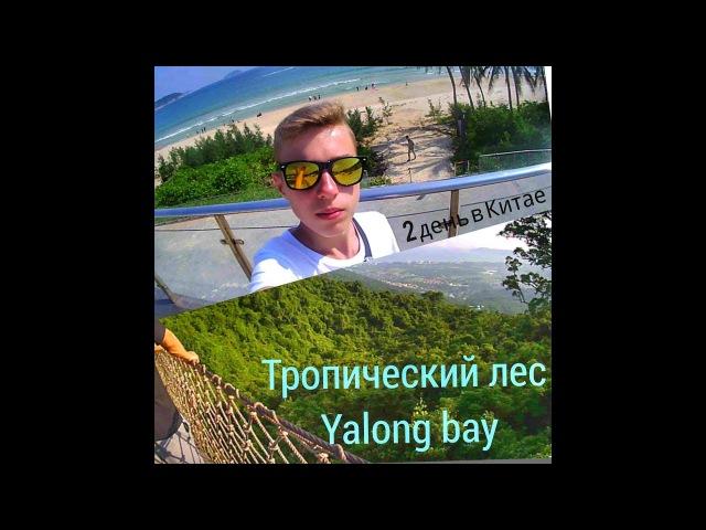 Экскурсия по тропическому лесу Yalong bay(2 день-В Китае)