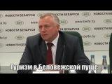 Все о туризме в Беловежской пуще