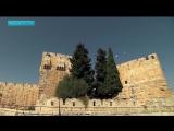 Пророки. Фильм 3. Царь Давид
