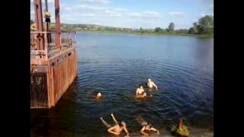 обучение плаванию » Freewka.com - Смотреть онлайн в хорощем качестве