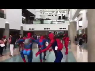 Танец пауков