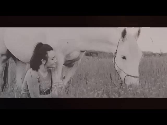 Сквозь бессилие и слезы | Конный спорт | Equestrian