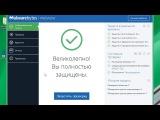 Malwarebytes Anti-Malware Premium 3.2.2.2018 — активация и ключ