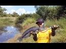 Как рыбачат в Таиланде #2 Змееголов