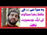 Wah Mera Nabi Hai   Hafiz Raza Sialvi   New Naat Album 2016