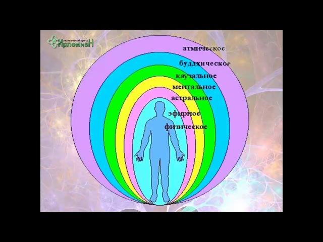 1 день - Аура, тонкие тела, энергетические каналы, физическое тело в целом