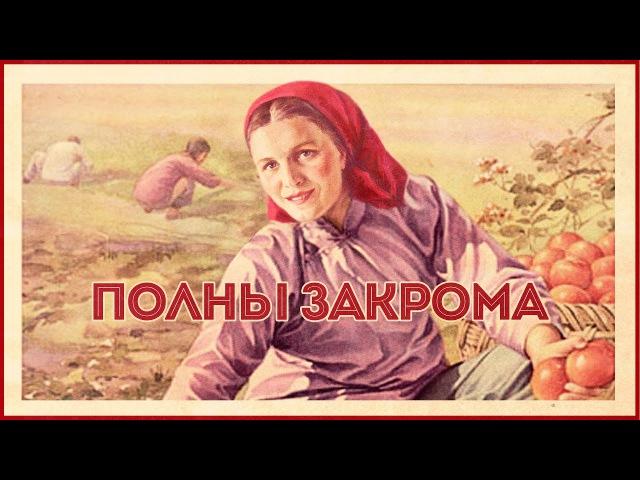 Рекордный урожай-2016: сельчане накормят Россию и заработают на экспорте