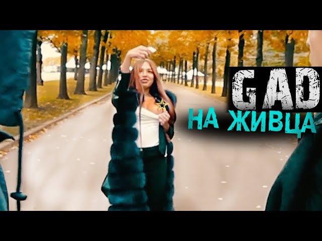ПОЙМАТЬ БЫВШЕГО НА ЖИВЦА / ГАДский Режиссер восьмой VLOG 8