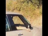 Дэниел на съёмочной площадке сериала «Медичи: Повелители Флоренции» в Риме, Италия | 24.08.17