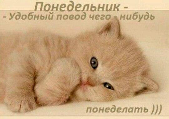 Записная книжка Натальи - Страница 7 CYkZH1ofDYE