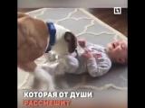 Человечек собаке друг (со звуком)