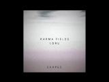 Karma Fields x L D R U - Shapes (teaser)