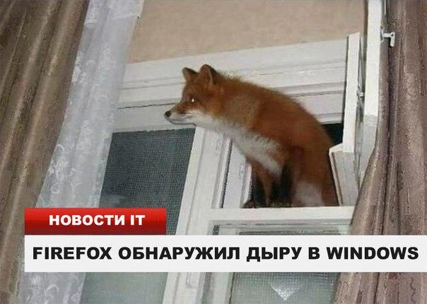 Фото №456278705 со страницы Люси Бушуевой
