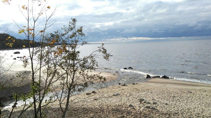 Алёнка Ежова | Tallinn (Таллин)