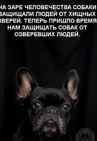 Лёха Р.