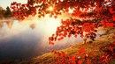 Отношения#осень#октябрь